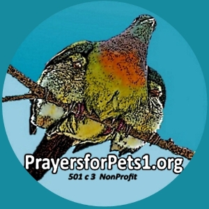 Prayers for Pets 1.org logo