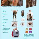Printfull-items-Revised.jpg