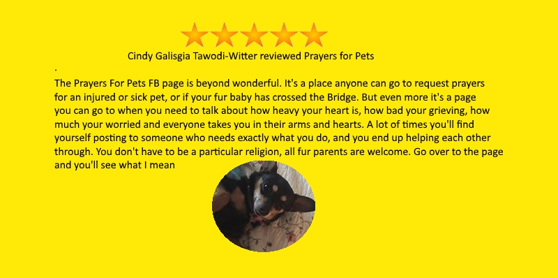 testimonial-Cindy-Galisgia.jpg