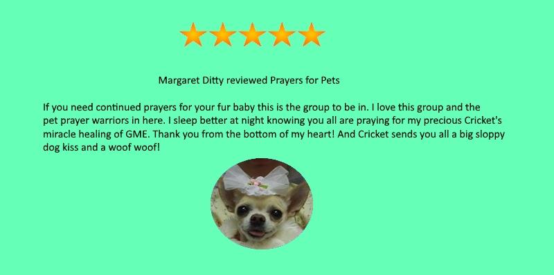testimonial-Margaret-Ditty.jpg