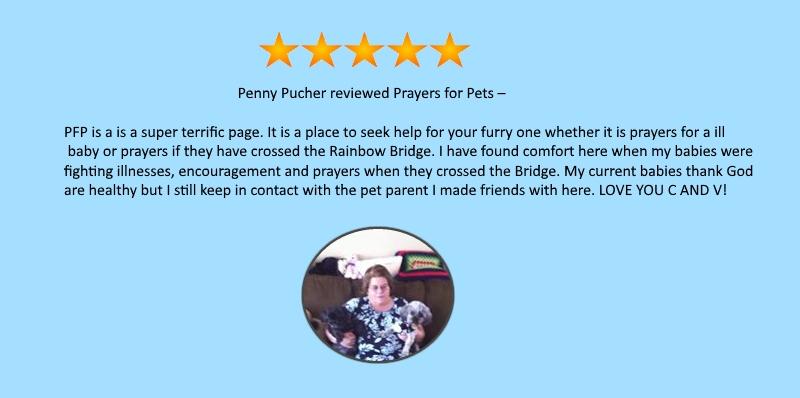 testimonial-Penny.jpg