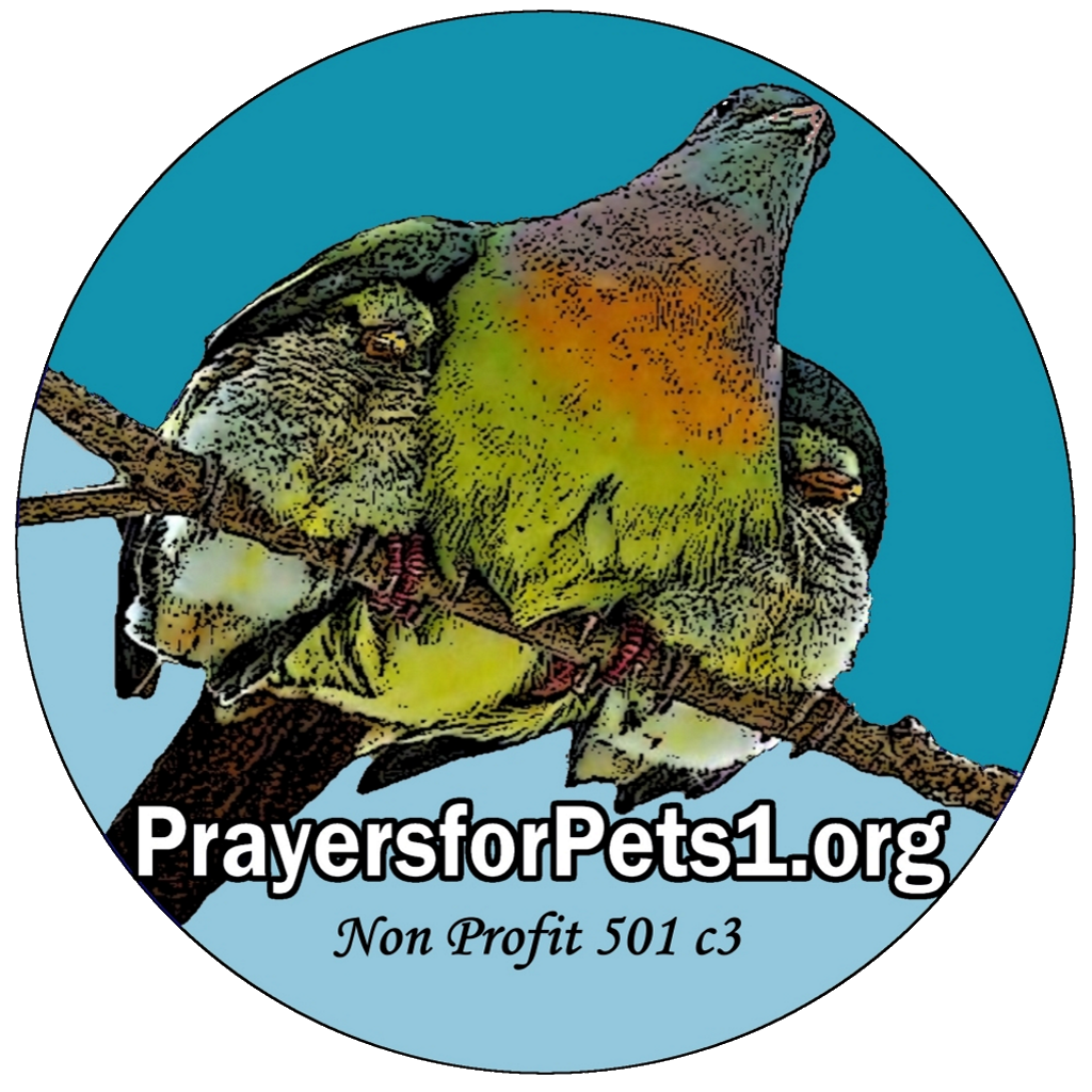 Prayers for Pets support for people and animals